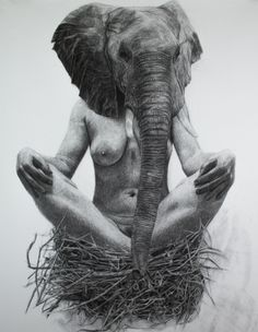 The B&W Works of Kelly Blevins: 127_111elephantnestforweb.jpg