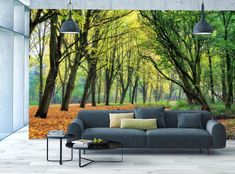 yoga mural forest relaxing path tree salvo decoracao
