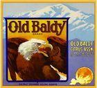 Upland Old Baldy Eagle #2 Light Orange Citrus Fruit Crate Label Art Print