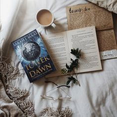 Tower of Dawn by Sarah J. Maas review available on my blog. Image taken by Tina Soetzenberg