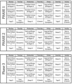 insanity workout schedule | P90X INSANITY Hybrid Workout Schedule ...