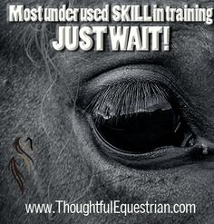 Do you agree with us that Waiting on your horse is the best trailing tool?  www.ThoughtfulEquestrian.com