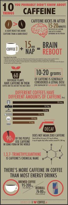 How Does Caffeine Work Coffee Is Life, I Love Coffee, Coffee Break, Coffee Lovers, Black Coffee, Big Coffee, Coffee Facts, Coffee Quotes, Coffee Cafe