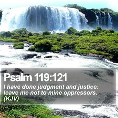 Psalm 119:121 I have done judgment and justice: leave me not to mine oppressors. (KJV)  #Light #Savior #Inspired #Inspired #DailyPrayer #GodsChristianWarriors http://www.bible-sms.com/