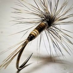 Just peccary and hackle with cdl tail. #flytying #flyfishing #flytyingjunkie…
