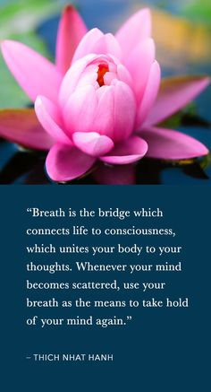 4 Thich Nhat Hanh Quotes On The Power Of Breath - #breathe #quote