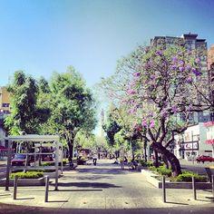 Paseo Chapultepec en Guadalajara, Jalisco