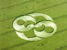 The first series of crop circles 7362