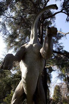 Diplodocus longus | Flickr - Photo Sharing!
