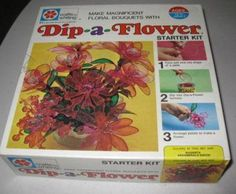 Vintage Dip A Flower Craft Kit 1971 Milton Bradley. my sister and I made these at a craft store in the with a bunch of mean women who were not happy two young girls were there taking the class with them. My Childhood Memories, Childhood Toys, Sweet Memories, Photo Vintage, All I Ever Wanted, Do You Remember, My Memory, Old Toys, The Good Old Days