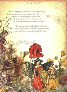 The S Book Of Flower Fairies Cicely Mary Barker Fairy Land Dust