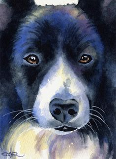 BORDER COLLIE Dog Art Print Signed by Artist DJ by k9artgallery   WATERCOLOR
