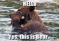 is it sad that i seriously repeated this like 5 times in my head in a bear voice and laughed every time?? haha