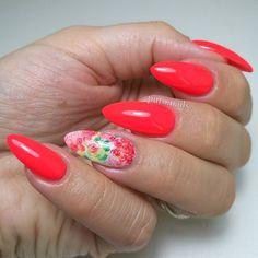 Nowy, 709 PROnail @procosmetics.pl Najlepsza z czerwieni, ktora kiedykolwiek malowalam!❤ #nailart #nailsoftheday #nails #nail #hybrydnails #hybrydymanicure #instant #instanail #nails2inspire #paznokciehybrydowe #springnails #piekne #paznokcie #polskadziewczyna #nailartist_manicure #nails #wiosna2017 #nailswag #hybryda #awesome #nowypost #nailsmagazine #hybrydypronail @paznokciove_inspiracje @10_perfectnails @akademia_paznokcia #nailru #nailstagram @nailsmagazine @nails_champions #livelove...