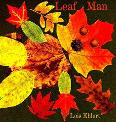 A man made of leaves blows away, traveling wherever the wind may take him. On die-cut pages.