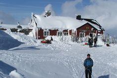 Blåhammaren Fjellstation -Sylan. Sprookjeshut, waar we zo ontzettend lekker hebben gegeten in een sfeervolle eetkamer. trektocht op ski's maart 2014.