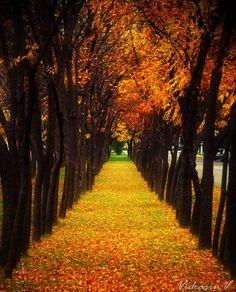 Autumn in Belgrade, Serbia