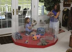 Marshall Ferret Play Pens with Red Mat Cover