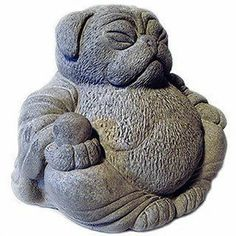 What do you think of the Buddha Pug ?Click the link now to find the center in you with our amazing selections of items ranging from yoga apparel to meditation space decor!