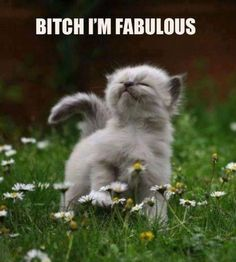 This goes thru my mind often. Haters gonna hate but bitch I'm fabulous
