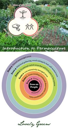 Review of a three-day Introduction to Permaculture course