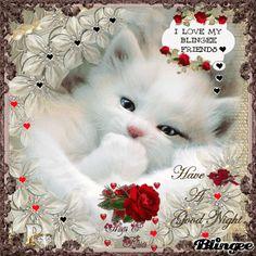 good night my friend blingee