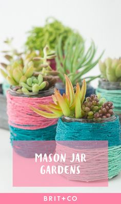 Check out these creative indoor mason jar gardens for your apartment.
