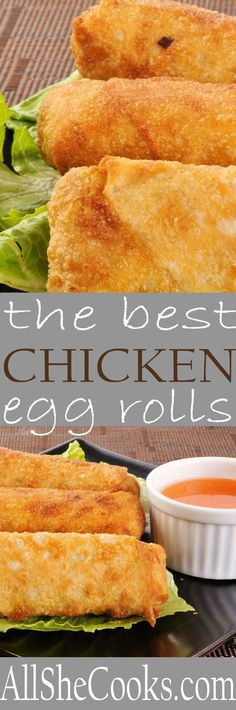 Make egg rolls with this homemade egg rolls recipe fro a healthy and tasty appetizer or meal. Fried or baked, egg rolls add a unique flavor to your meal. #chinesefoodrecipes