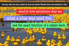 One day, when she was a grown-up, Rose sat Arthur Weasley down and explained to him: exactly how aeroplanes stay up; what a plug was used for; and the exact function of a rubber duck