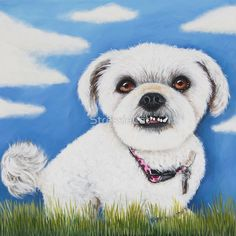 Maddie's Sky by StressieCat | on Redbubble♥•♥•♥