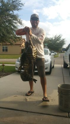 Sheepshead Catching