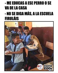 35 Pics and Memes to Die By Memes Humor, New Memes, Funny Jokes, Hilarious, Funny Spanish Memes, Spanish Humor, Mexican Memes, Humor Mexicano, Pinterest Memes