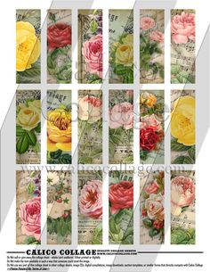 Bella Roses  Instand Download Digital Collage by calicocollage, $4.15