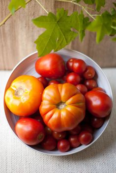 Tomatoes, food photography & styling by Michelle Smith