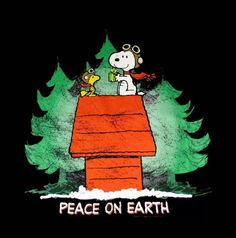 Peace on Earth Merry Christmas Snoopy and Woodstock. Peanuts Christmas, Charlie Brown Christmas, Christmas Fun, Xmas, Christmas Cartoons, Christmas Ornament, Peanuts Cartoon, Peanuts Snoopy, Merry Christmas Wishes Quotes