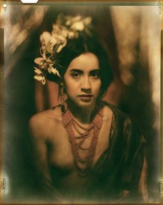 james wigger - Buscar con Google