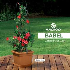 #BABEL  Viene venduto con vaso Nazca, Sv Nazca, rete e 2 ganci.  #lineagarden #marchioro