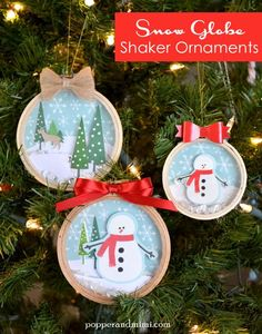 Popper and Mimi: Embroidery Hoop Snow Globe Shaker Ornaments/these might be cute to make with the boys as presents for Mommy/Daddy