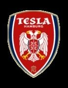 FK Nikola Tesla Hamburg German Football Clubs, Nikola Tesla, Porsche Logo, Badges, Hamburg, Badge, Lapel Pins