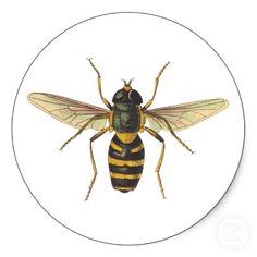 Bee  http://www.zazzle.co.uk
