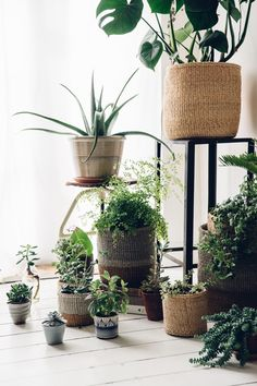 When plants and Natural materials mix. These beautiful Fairtrade storage baskets for the home are made using traditional techniques.