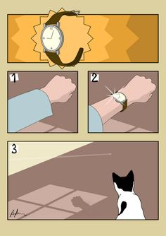 """How to entertain a cat on a budget, No. 5"""