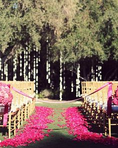 Wedding Aisle Decor Ideas.  Done in the white petals but only on the sides of the aisle!