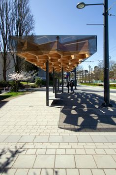 Thin steel columns are arranged in a staggered line and supports a cellular structure of wood large coated glass nearby the Katsura tree line