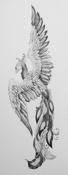 Phoenix bird drawing art mythical creatures 67 Ideas for 2019 Phoenix Bird Tattoos, Phoenix Tattoo Design, Phoenix Design, Rising Phoenix Tattoo, Body Art Tattoos, New Tattoos, Tattoos Skull, Fenix Tattoos, Phoenix Art