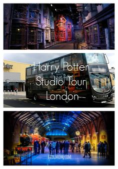 All about the Harry