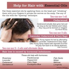 Help for Hair Loss - Gary Young regrew his hair by alternating 3 essential oils:  Lavender, Cedarwood & Clary Sage. www.fb.com/elviesessentials #youngliving #essentialoils