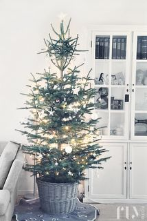 My favorite kind of Christmas tree.  Natural.  Simple.