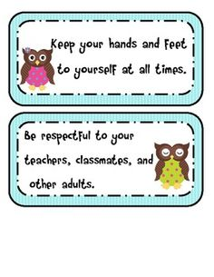 Funny that I could have used these for 5th grade this past year. Maybe my new class won't be so in each other's space. Owl Theme Classroom, Classroom Behavior, Classroom Rules, Classroom Crafts, Classroom Posters, Future Classroom, Classroom Organization, Classroom Management, Classroom Ideas