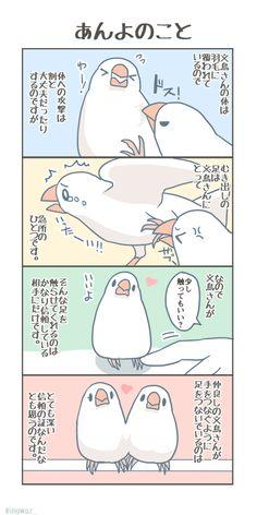 Japan, Bird, Comics, Parrot, Illustration, Animals, People, Drawings, Parrot Bird